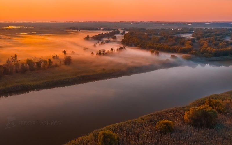 астраханская область, река, вода, волга, рассвет, путешествие, дельта волги, туман, деревья, Нежно утро в дельтеphoto preview