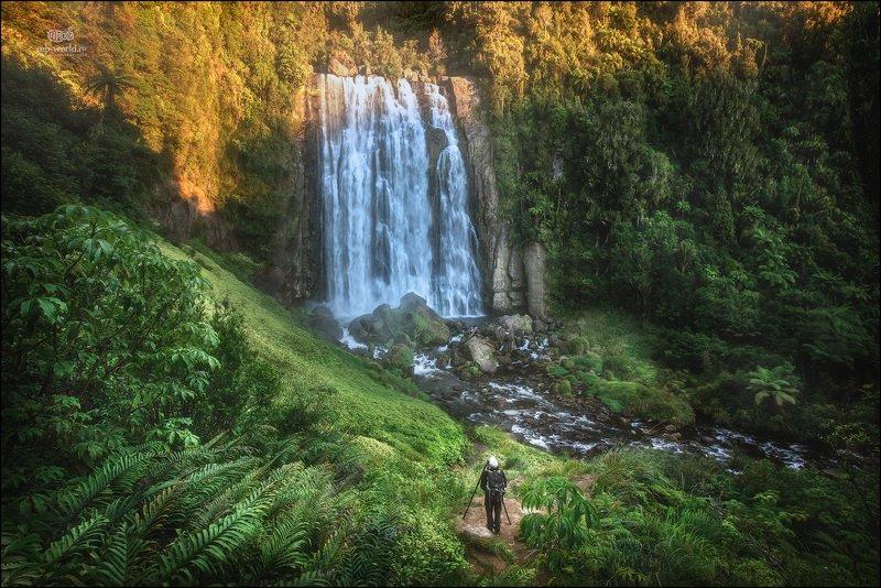 новая зеландия, водопад, пейзаж, северный остров Водопад \