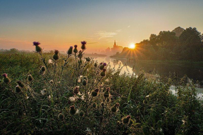 утро, река, рассвет, туман, дунилово, теза Оранжевый рассывет фото превью
