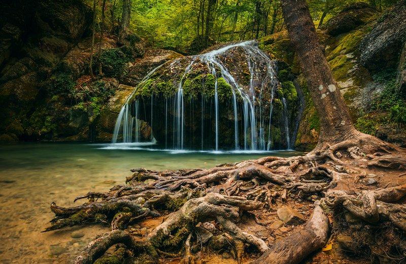 крым, водопад, лес, река, пейзаж, лето, вода, деревья, россия,  хапхал, ущелье, улу-узень И у водопадов есть корни...photo preview