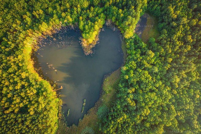 drone, dji, air, poland, polish, landscape, sunrise, sunset, colours, summer, awesome, amazing, adventure, travel, beautiful, morning, lake, pond, heart, love Love is everywhere фото превью