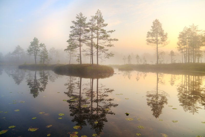 туманное утро на озере...photo preview