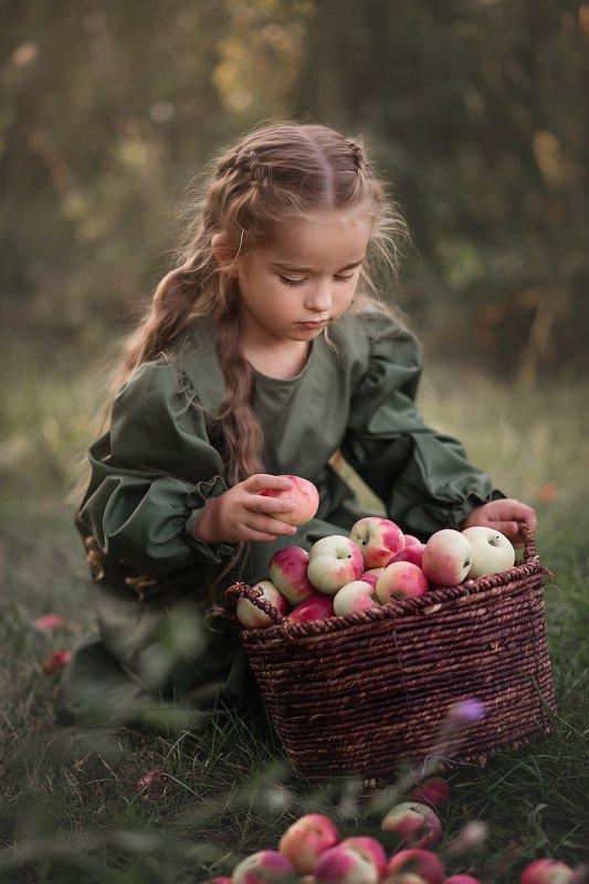 Дети, яблоки, сказка  фото превью