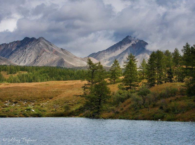 монголия Монголия. Предгорья Монх-Сарьдагаphoto preview