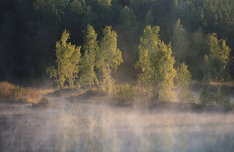 утро, рассвет, природа, туман, река Рассвет на болотахphoto preview