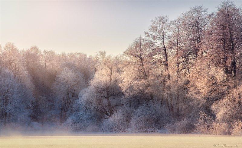 Холодная сказка в теплых тонах.photo preview