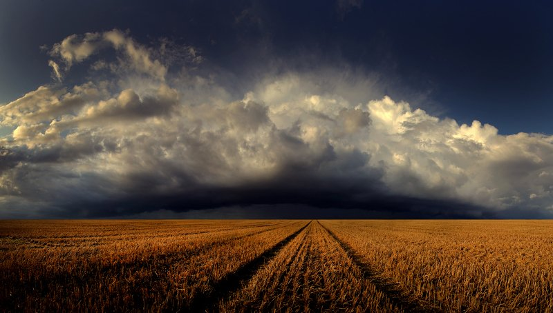 Lithuania, storm, clouds, field, summer *photo preview