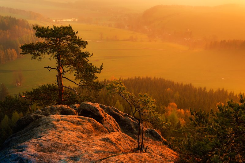 landscape,canon,mist,light,summer A Little Hope For The Future...photo preview
