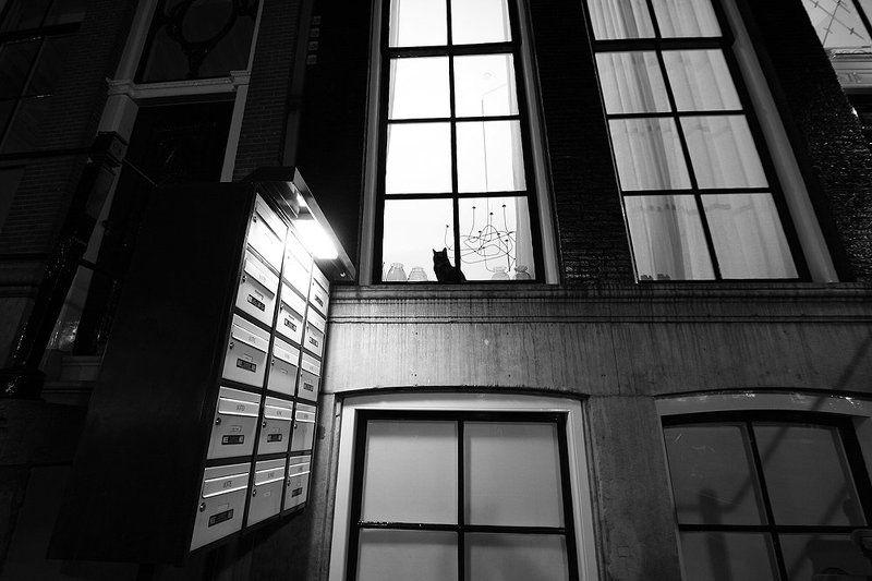 амтердам За окномphoto preview