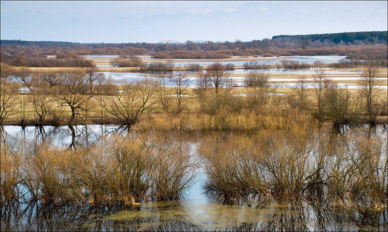 весна, березина, беларусь, река Весенние ритмыphoto preview