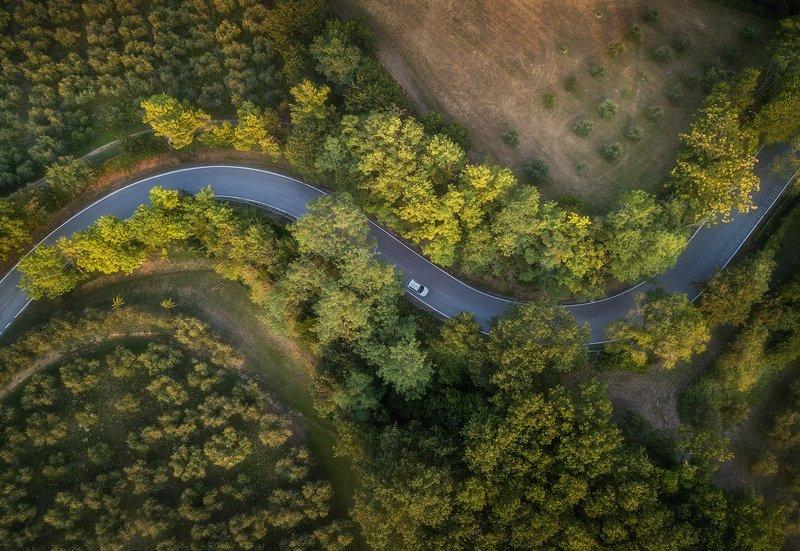 италия, квадрокоптер, дрон Среди оливковых рощphoto preview