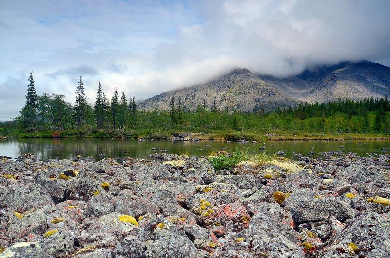 Хибинские тундры 2019-6photo preview