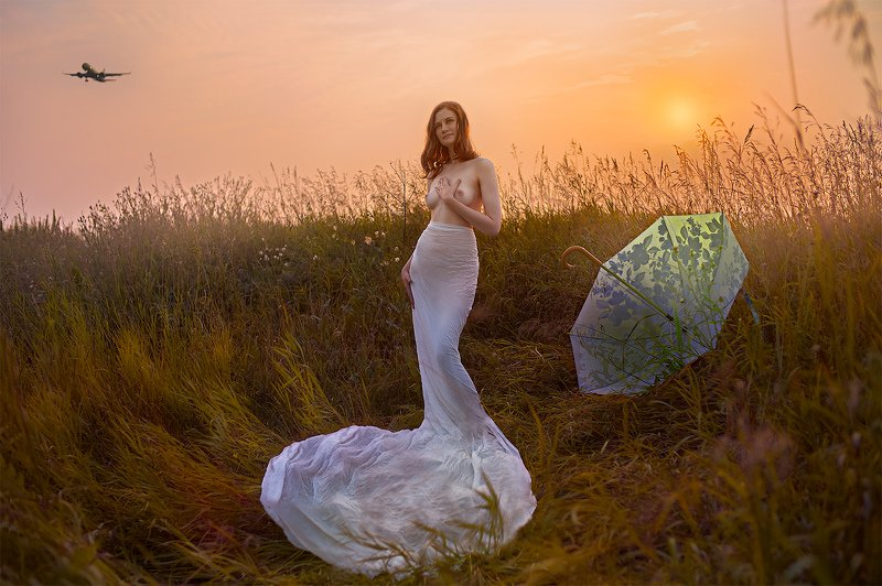 Outdoors  Day  Nature  Swan  White Color  girl  sun  sundown  sunflower  sunlight  sunny  sunrise  sunset  sunshine  beautiful  beauty  beauty in nature  single  people  airplane  umbrella  grass  sky  young  young women  fly  flying  meadow  hayfield  gr photo preview