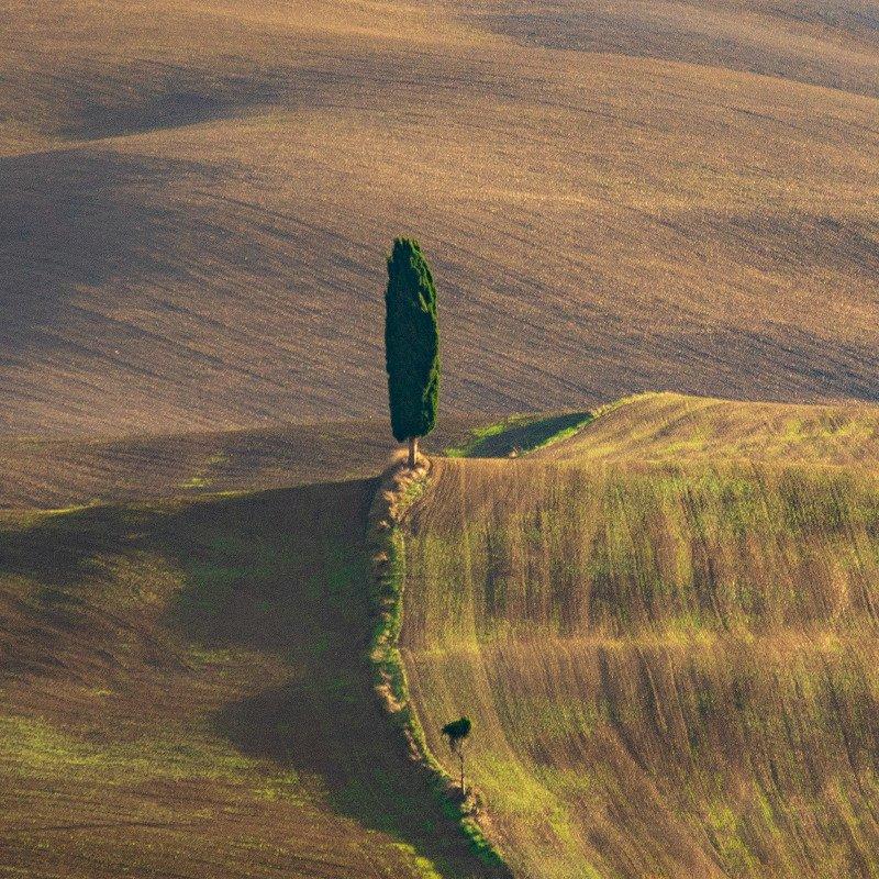 tuscany, тоскана, минимализм Отец и сынphoto preview