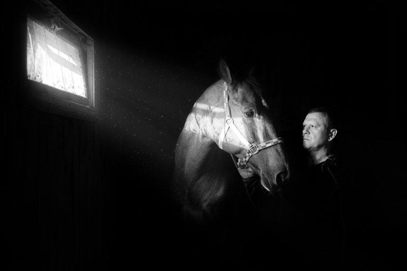 лошадь, человек, взгляд, друг Немой разговор...photo preview