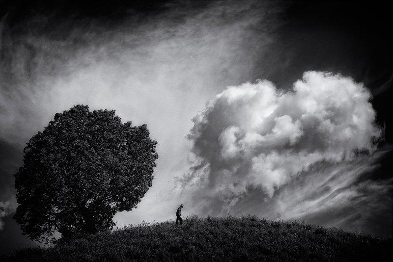 пейзаж,одиночество,человек Уединение.photo preview