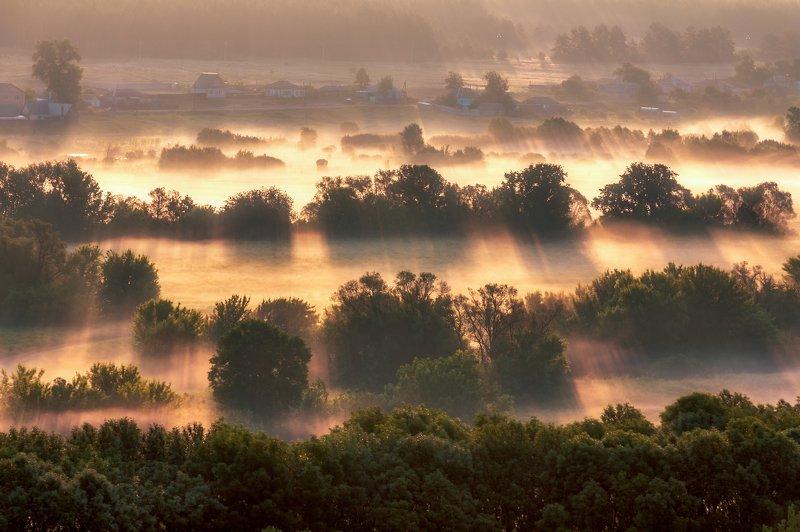 haze, mist, morning, sunrise, dawn, дымка, туман, утро, рассвет Morning Hazephoto preview