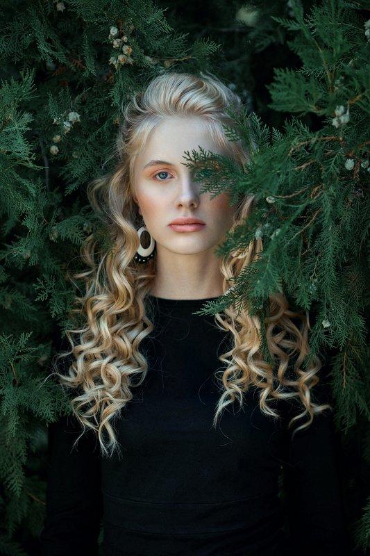 portrait, girl, model, eyes, hair, lips, face, beauty, facial, make-up, photographer, russia, nikon Anastasiaphoto preview