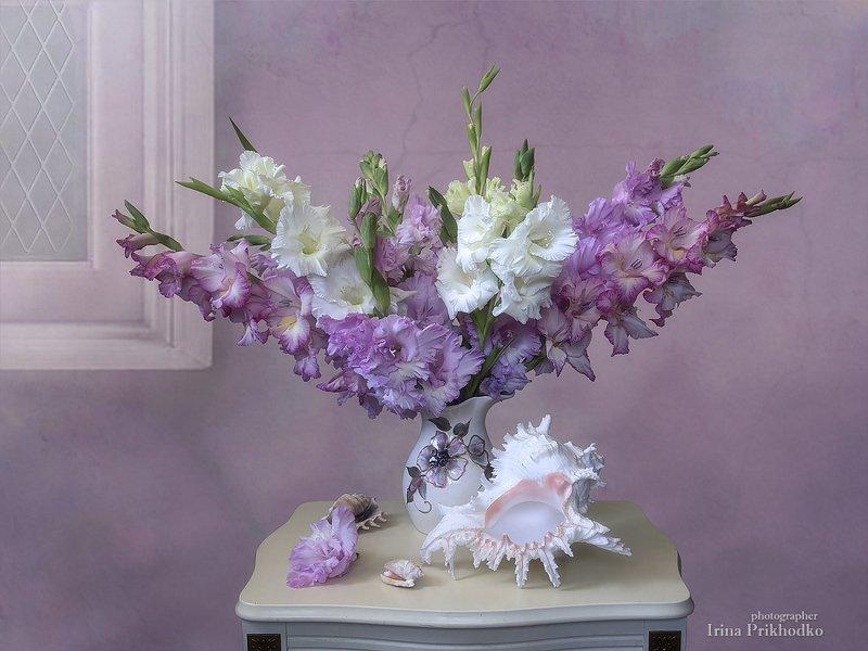 натюрморт, букет, цветочный, винтажный, гладиолусы, Гладиолусовый зефирphoto preview