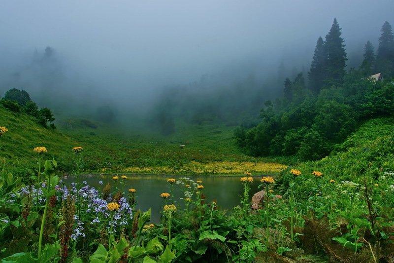 лето, горы Июльphoto preview