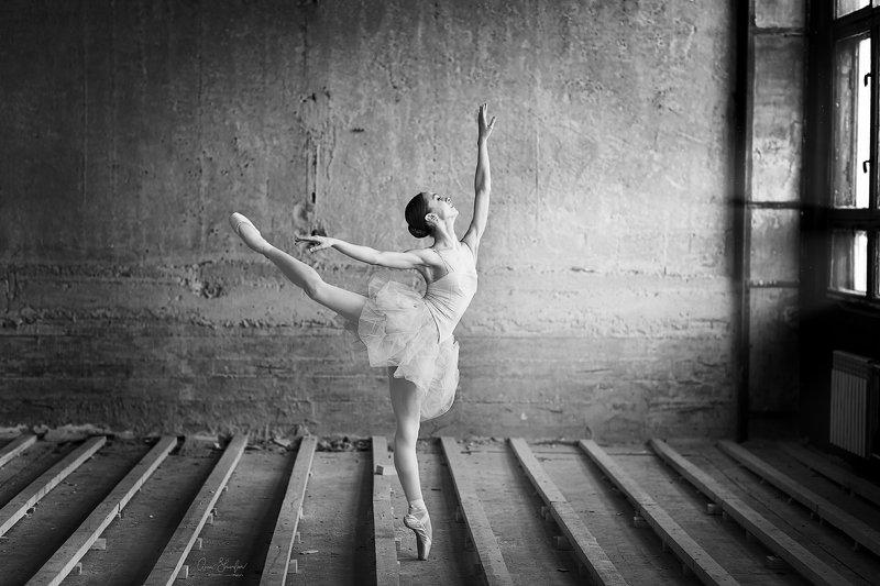 портрет красота девушка арт балетphoto preview