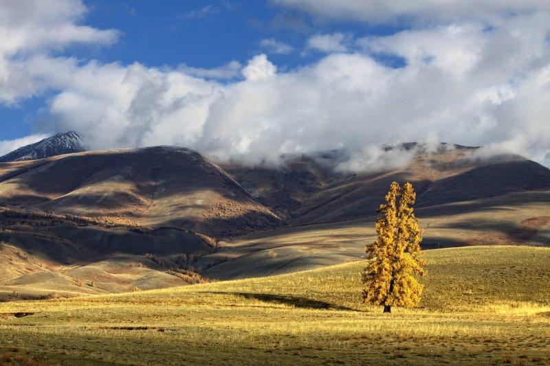 алтай, горный алтай, горы, сибирь, курай Плывут облаков караваныphoto preview