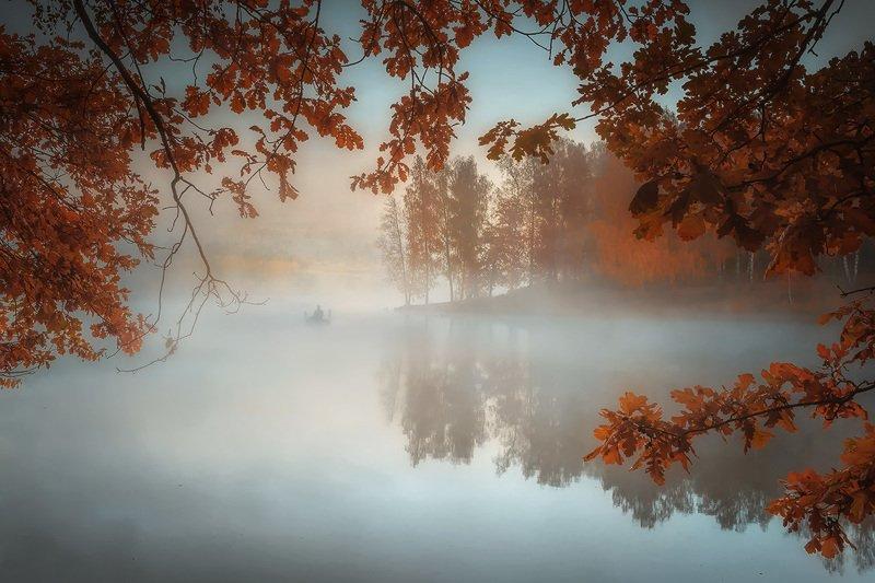 Золотая осень.photo preview
