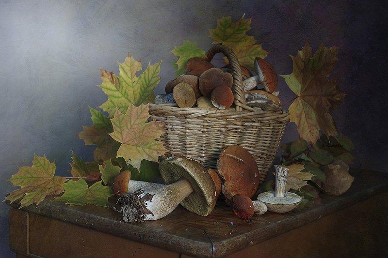 натюрморт,грибы,лето,вера павлухина, Грибная пораphoto preview