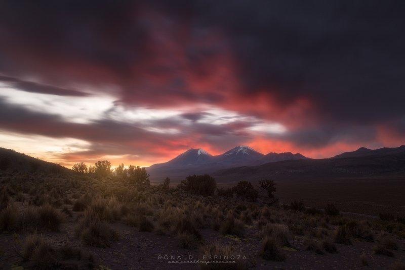 landscape, nature, travel, sunset, bolivia, mountain, conservation Decidí poner un poco de músicaphoto preview