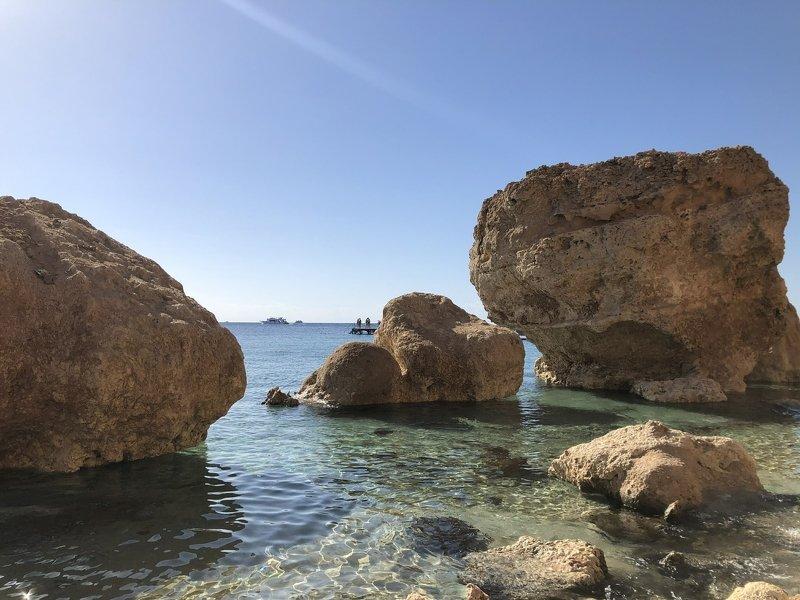 египет, красное море,рифы,побережье Побережье Шарм-эль- Шейхаphoto preview