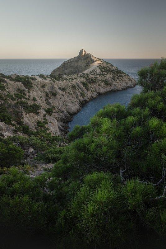 пейзаж природа море дерево мыс гора крым  No titlephoto preview