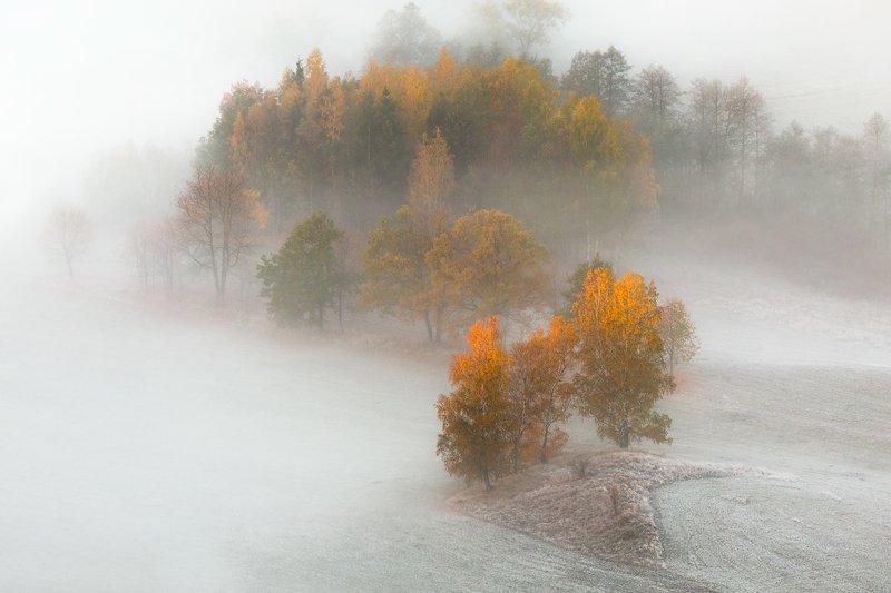 landscape,canon,mist,light,autumn The First Autumn Frosts...photo preview