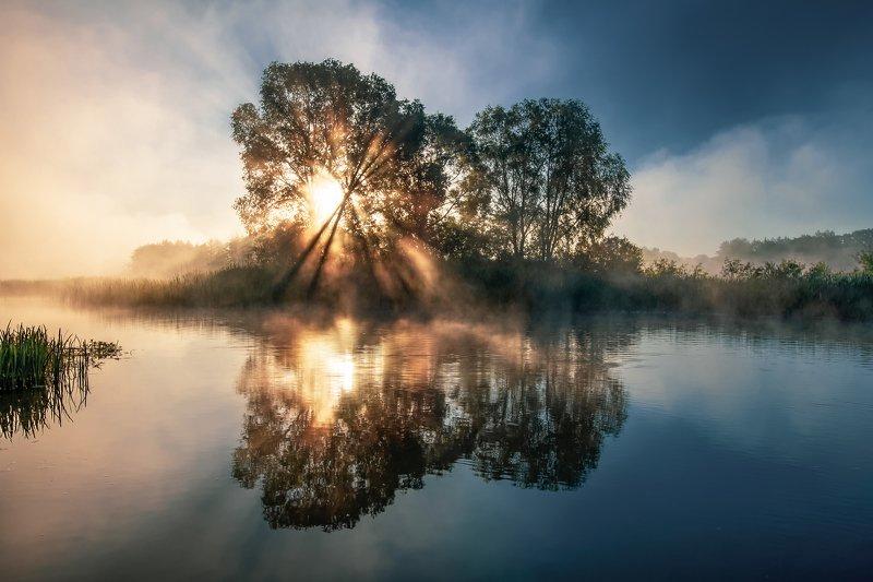 sunrise dawn mist river bank morning summer рассвет туман река берег утро лето Misty Butterflyphoto preview