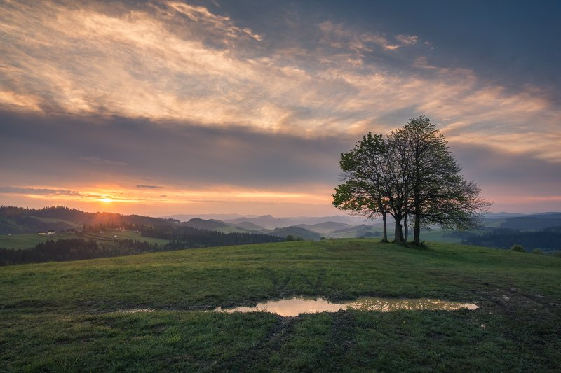 mountains, spisz, pieniny, poland, morning, sunrise, sun, tree, lonely, Morning in Spiszphoto preview
