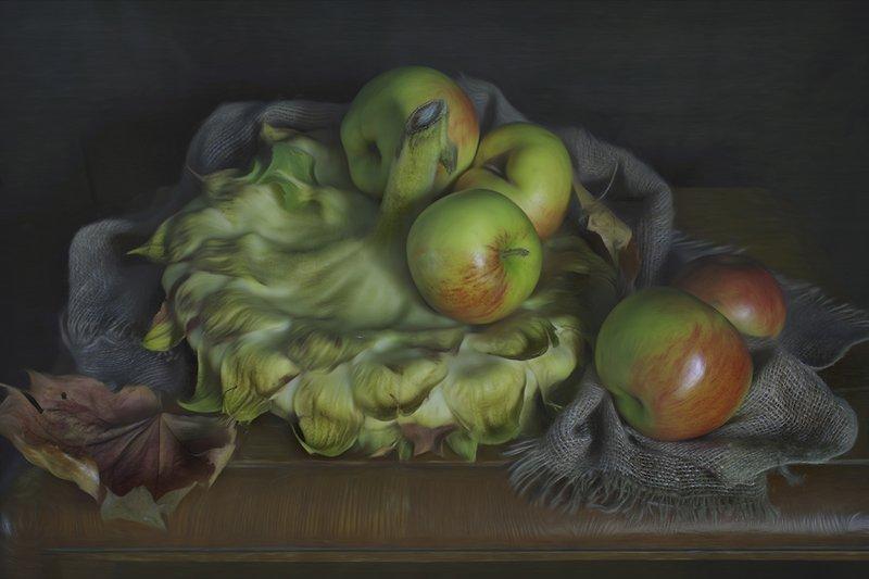 натюрморт,яблоки,подсолнух,осень,вера павлухина, Подсолнух и яблоки.photo preview