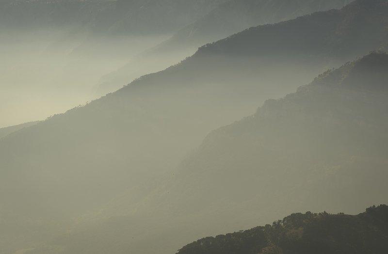 Крым, Crimea, лес, туман, Алушта Состояние перспективыphoto preview