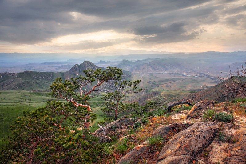 горы,вершины,пейзаж,небо,деревья,дагестан,природа Вечерний пейзаж..photo preview