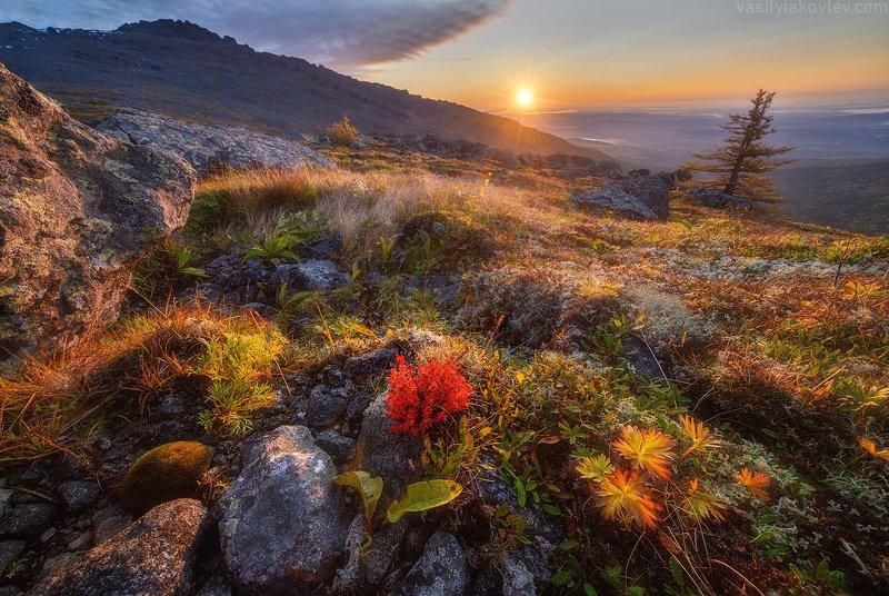 урал Осень на Северном Урале фото превью
