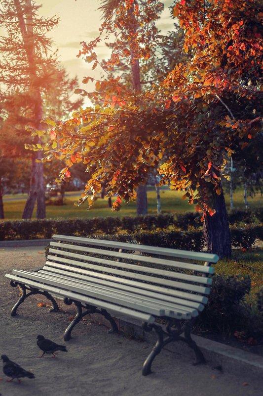 Вот и осень...photo preview