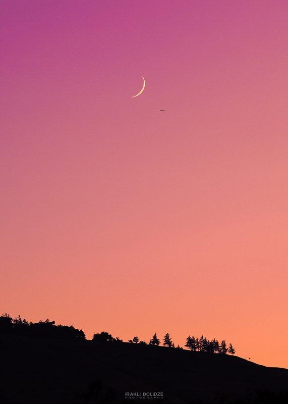 moon, plane, landscape, sunset, trees, violet, color, Autumn Cozyphoto preview