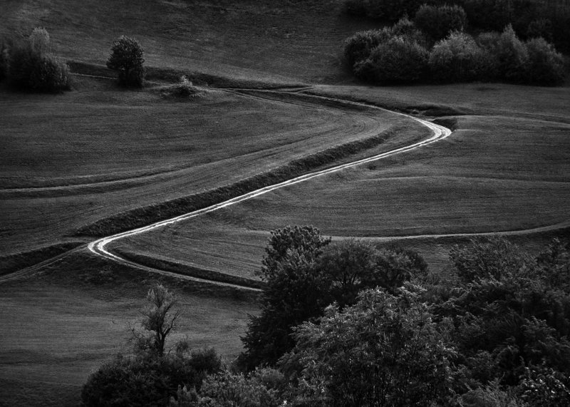 landscape,b&w,nature,field,rural,trees,shadows,agriculture,meadow Via Sphoto preview