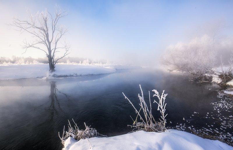 утро, зима, туман, солнце, рассвет, река Зимнее утро у рекиphoto preview