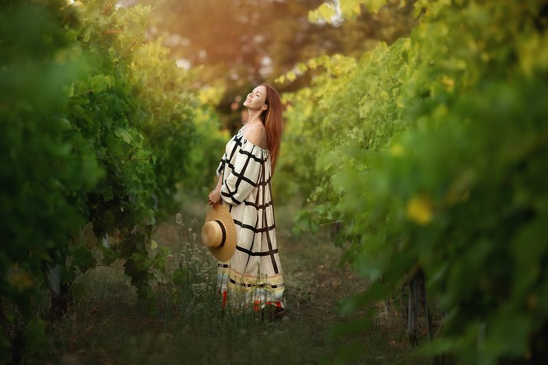 виноградник, лето, модель виноградникиphoto preview