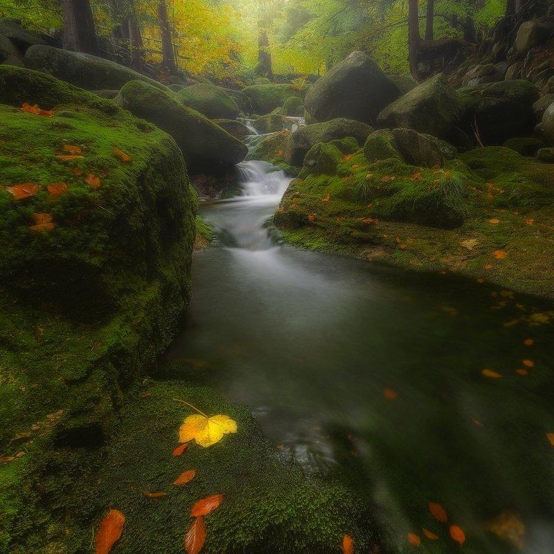 landscape,canon,mist,light,autumn,waterfall Transcendental Meditation....photo preview