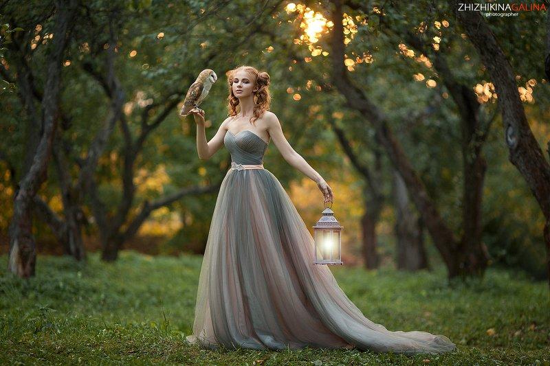 девушка, портрет, сова, природа, лицо, рыжая, фонарь, свет, фотография, фотограф, москва, portrait, face, girl Закат в саду фото превью