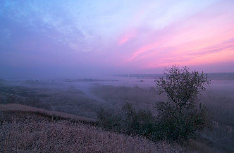рассвет, осень, речка, туман. за туманамиphoto preview