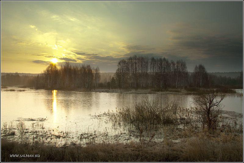 весна,пейзаж,утро,паводок,деревья,вода,мальцево,палитра, ВЕСНА !!!photo preview