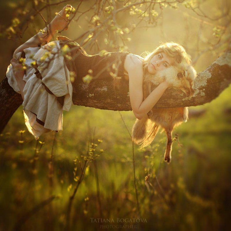 закат, лиса, девушка, лес Лисьи сныphoto preview