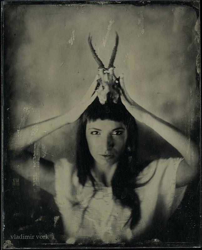 3b, 8x10, ambrotype, collodion, dallmeyer, Fine art, plate, Vladimirvork, wet тот мир3photo preview