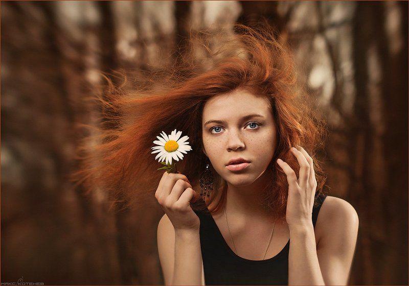 девочка, ромашка, ветер Девочка с ромашкойphoto preview